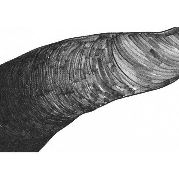 Csontok - eredeti absztrakt grafika